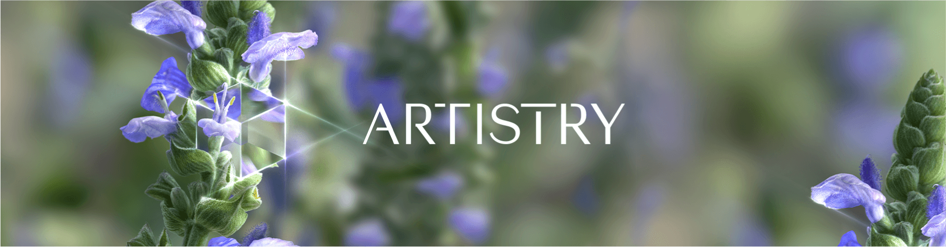 ARTISTRY by Amway